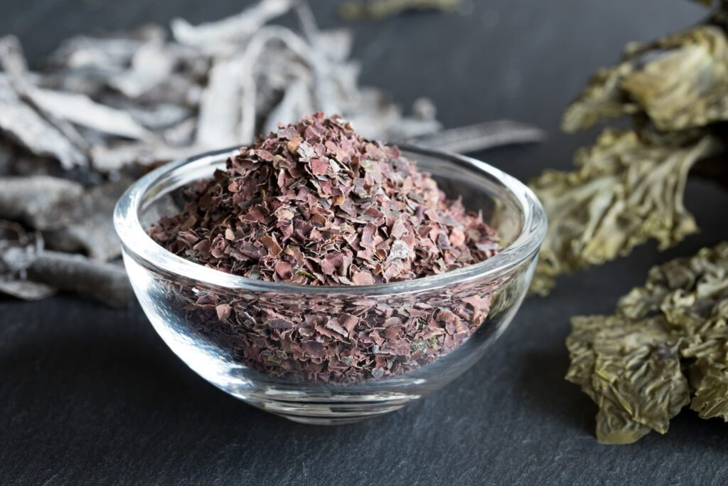 dulse helbed
